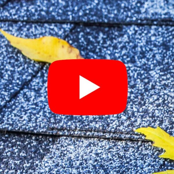 falling leaves on roof